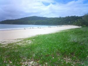 800px-Noosa_beach-raffi_kojian-CIMG6544